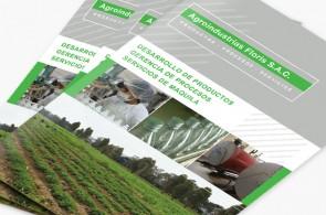 Sobre el proyecto Diseño de brochure con el objetivo de comunicar los servicios de desarrollo de productos, gerencia de procesos y servicio de maquila para Agroindustrias Floris.